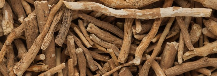 Ashwagandha Review: Benefits, Dosage, Stacking and Side Effects