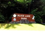 AliceLake-park