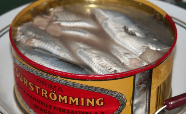 Take A Look Inside Sweden's Disgusting Food Museum | BrainCharm