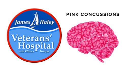 Pink Concussions 6