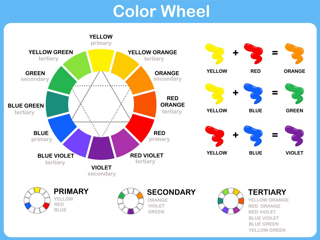 Color And The Brain