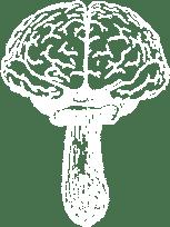 Brainfood mushroom logo white