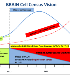 brain cell census vision through 2025 graph of phase and year phase 1 pilot [ 1200 x 814 Pixel ]