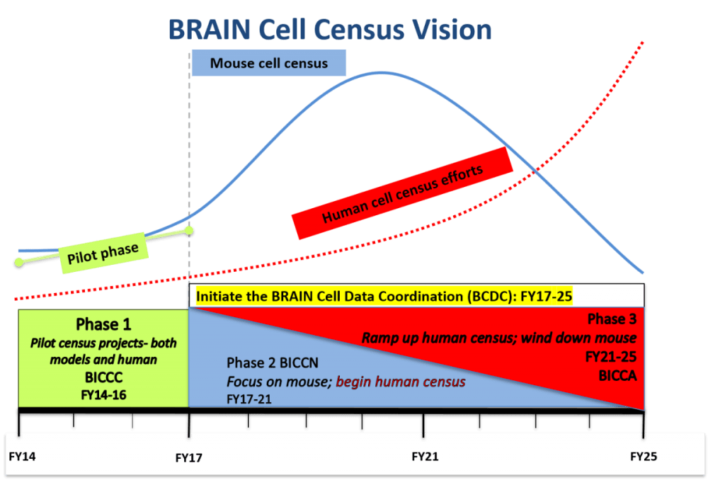 medium resolution of brain cell census vision through 2025 graph of phase and year phase 1 pilot