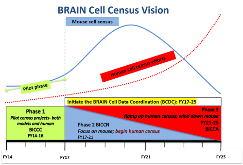 small resolution of brain cell census vision through 2025 graph of phase and year phase 1 pilot