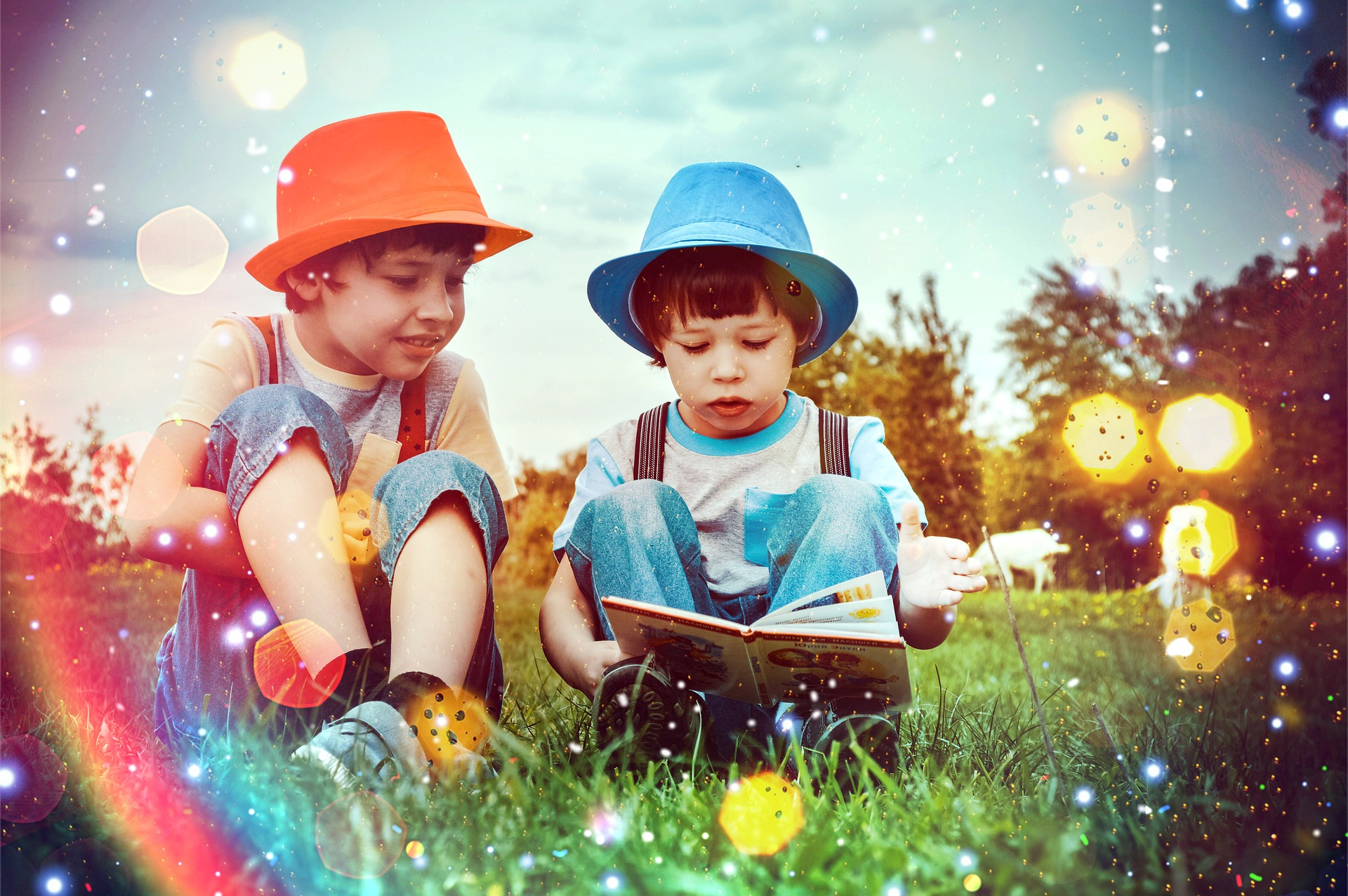 boys-4116363_1920_c_victoria-borodinova_pixabay