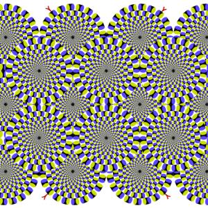 The Flip Tilt Illusion