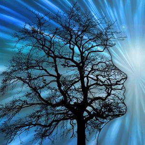 Silhouette Kopf mit Baum symbolisch für Neuronenverbindungen im Gehirn
