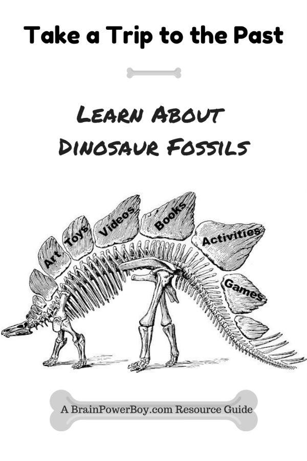 Dig This Dinosaur Fossils Unit Study