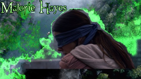 Malorie Hayes, Bird Box, Netflix, Bluegrass Films, Chris Morgan Productions, Sandra Bullock