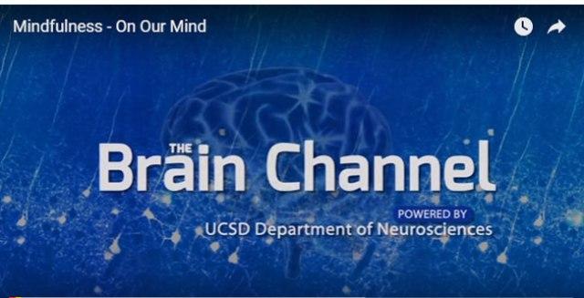 Mindfulness Brain Channel Interview