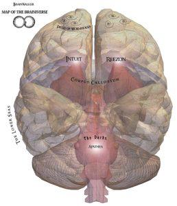 brainwalker-book-brain-map-brainiverse
