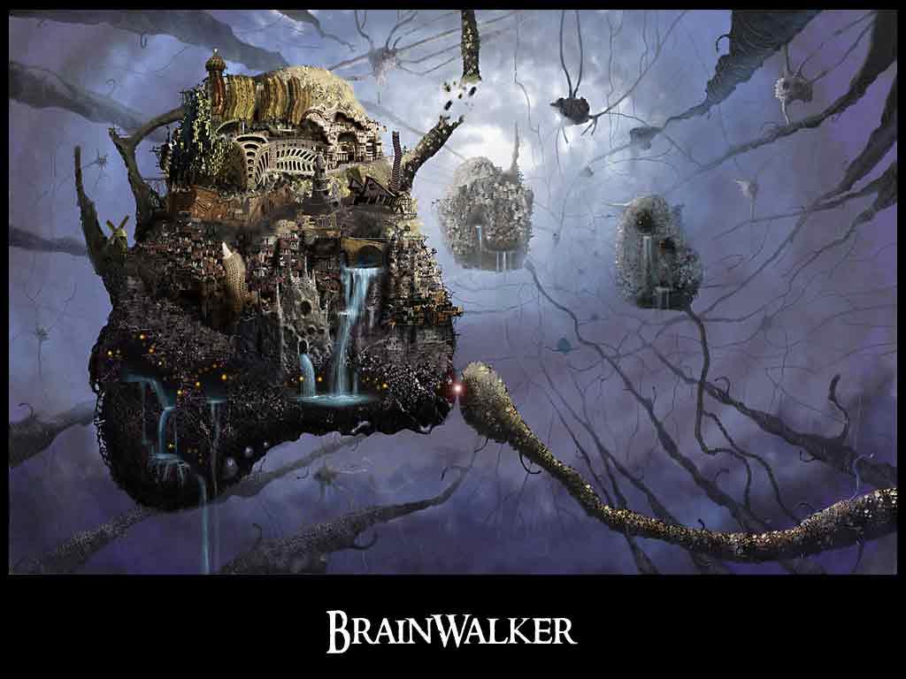 brainwalker-book-intuit-right-side-of-the-brain