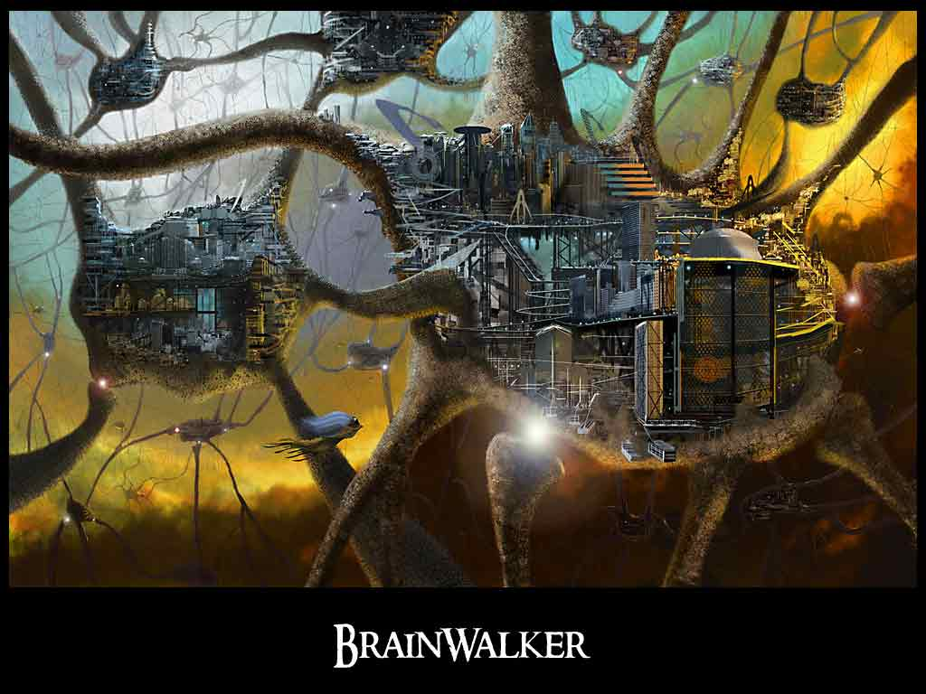 brainwalker-book-reezon-left-side-of-the-brain