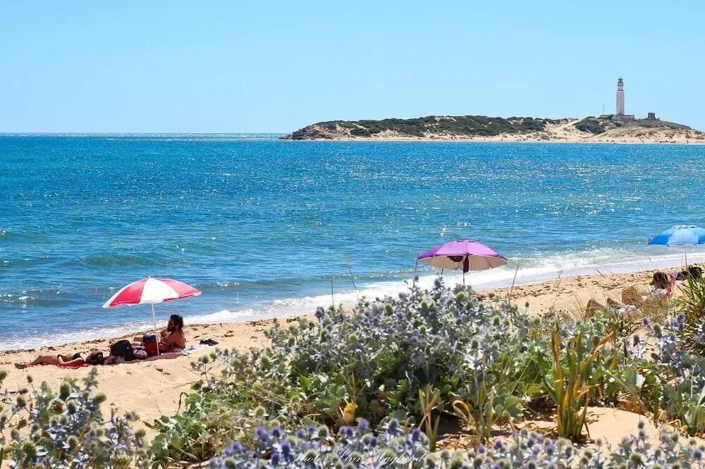 Views of Cape Trafalgar