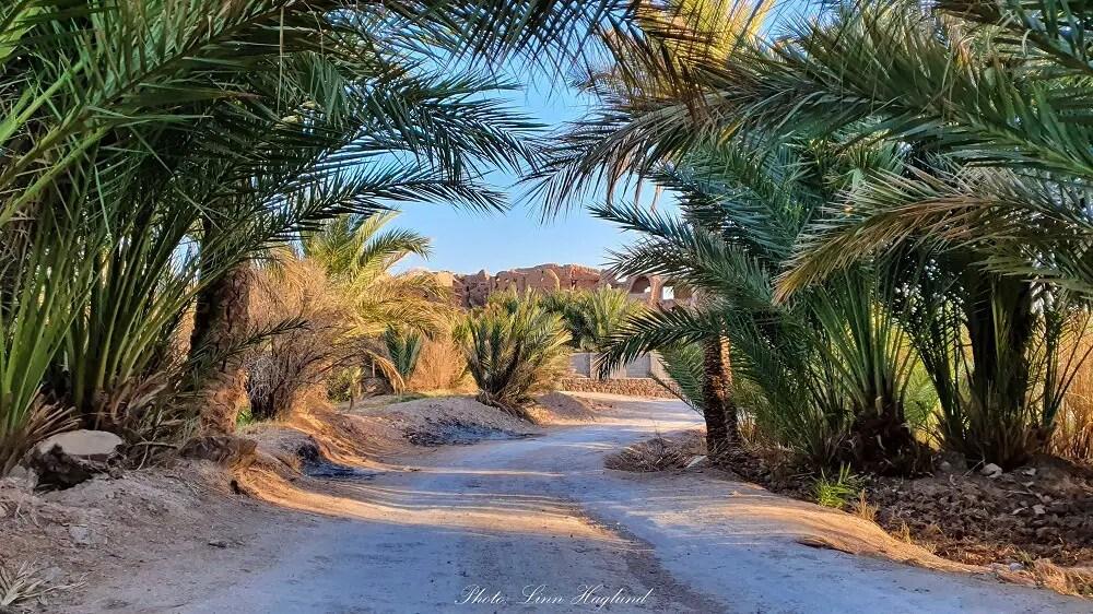 Garmeh desert oasis in Iran