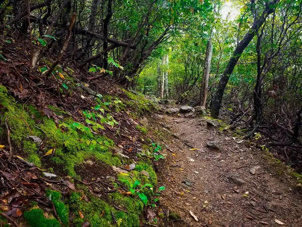 Best East Coast Hikes - Three Ridges