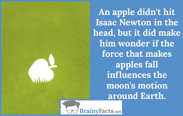 History Facts Isaac Newton Apple Did You Know