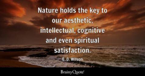 Aesthetic Quotes BrainyQuote