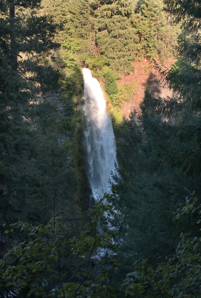 Mill Creek Falls dropping into the Rogue River in Prospect, Oregon