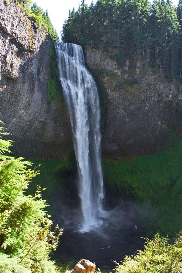 Salt Creek Falls from the lower trail