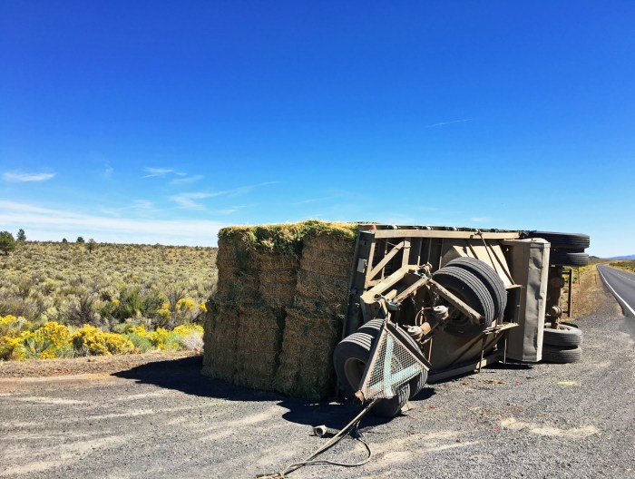 A large trailer of hay bales had flipped and was left behind on the side of the road