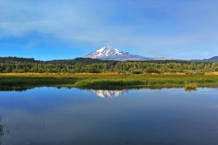 View of Mt. Adams and its reflection in Trout Lake at Trout Lake Natural Area Preserve