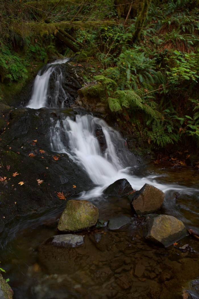 A couple of the levels of falls at Shepperd's Dell Falls