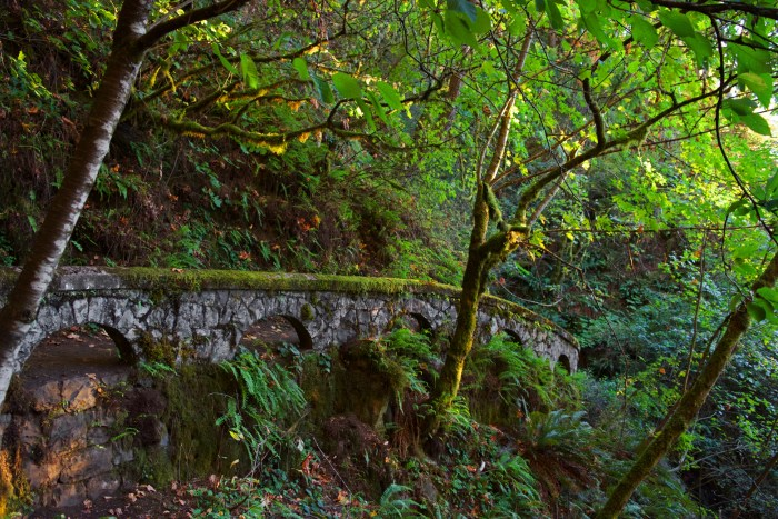 Arched wall along trail to Shepperd's Dell Falls