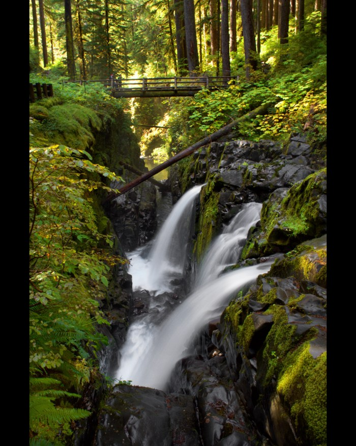 View of the three-pronged Sol Duc Falls with foot bridge in the background
