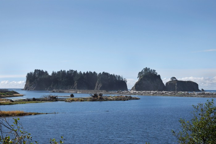 View of James Island from the mouth of the Quillayute River