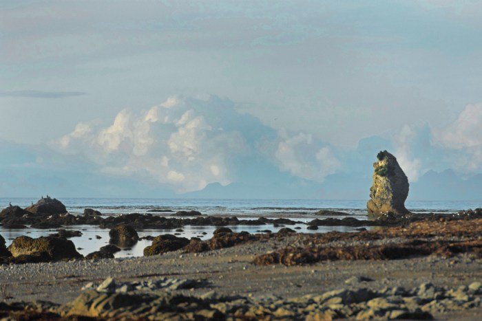 Cape Alava Beach with rocky tide pools and a rock that looks like a monster with arms folded and a puffy cloud in the distance