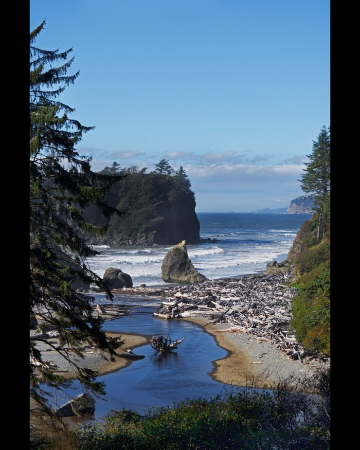 View of Cedar Creek flowing into Ruby Beach and the sea stacks just off shore from the cliff above the beach
