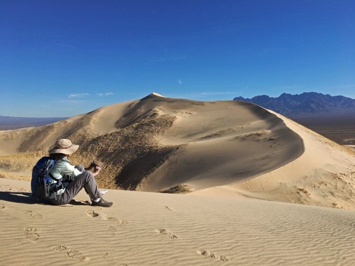 Christina dumping sand out of her shoes while sitting on top of the Kelso Dunes