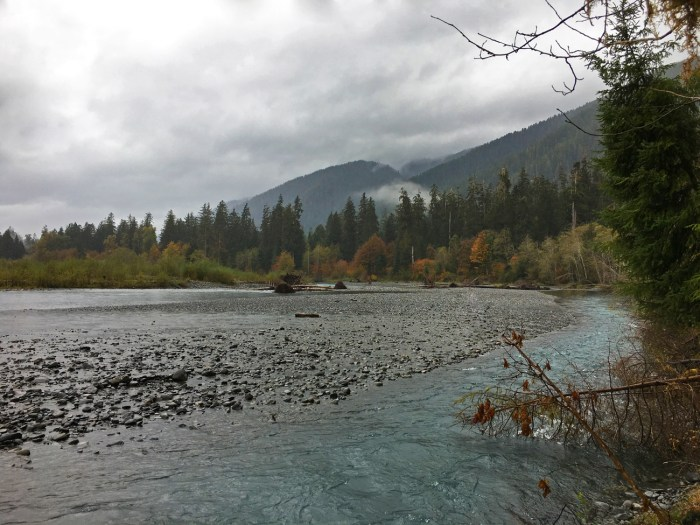 The Hoh River with the rain forest on the edge, mountains and clouds in the distance