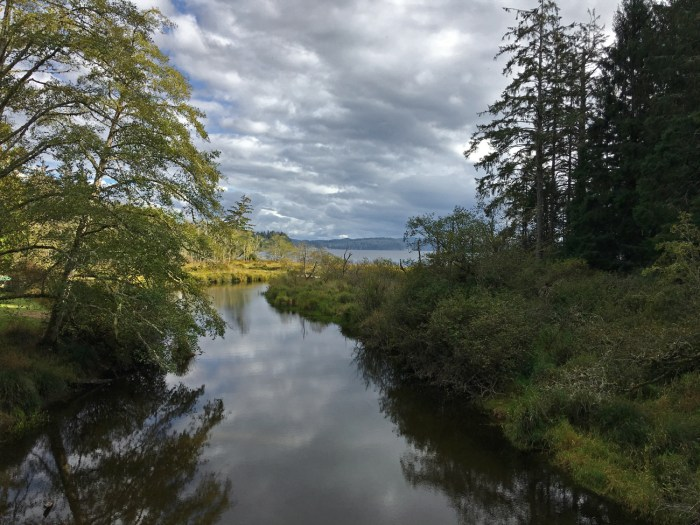 View of Ozette Lake from a footbridge crossing a creek on the Cape Alava Trail