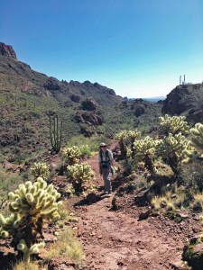 Christina on the Bull Pasture Trail surrounded by cholla cacti