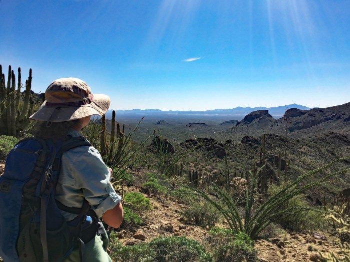 Christina admiring the view from Bull Pasture Trail - ocotillo, organ pipe cactus, desert mountain peaks and valleys