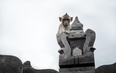 Monkey Temple, Bali