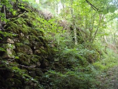 2014-Alpe-Orocco 009 (1024x768)
