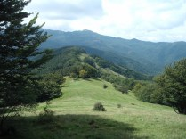 2014-Alpe-Orocco 035 (1024x768)