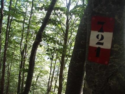 Sentiero 721