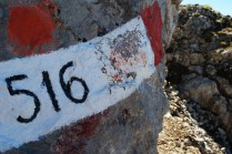 Sentiero 516