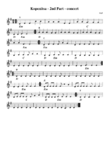 kopenitsa_aabbccddeeff_-_2nd_part_-_concert