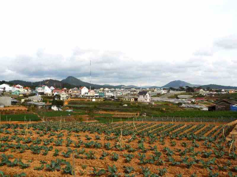 Da Lat Countryside