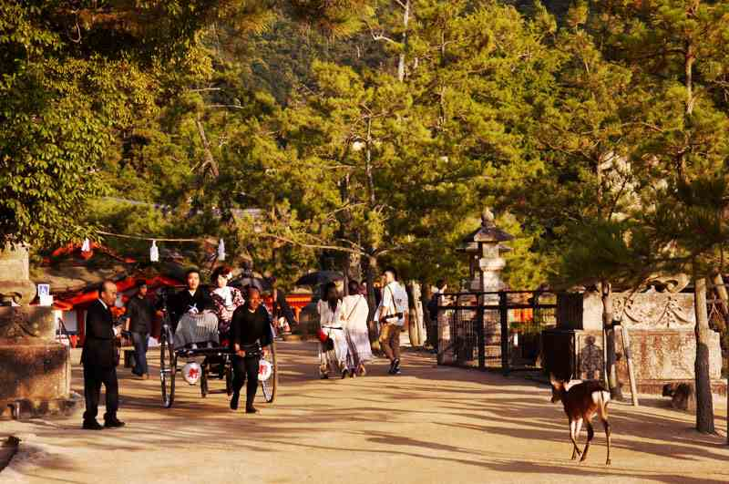 Ebisuya Rickshaw