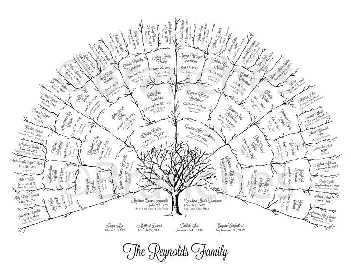 Personalized 5 Generation Ancestral Family Tree Fan Chart