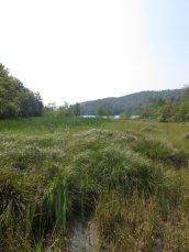 voyage-vacances-croatie-2016-lacs-de-plitvice-9