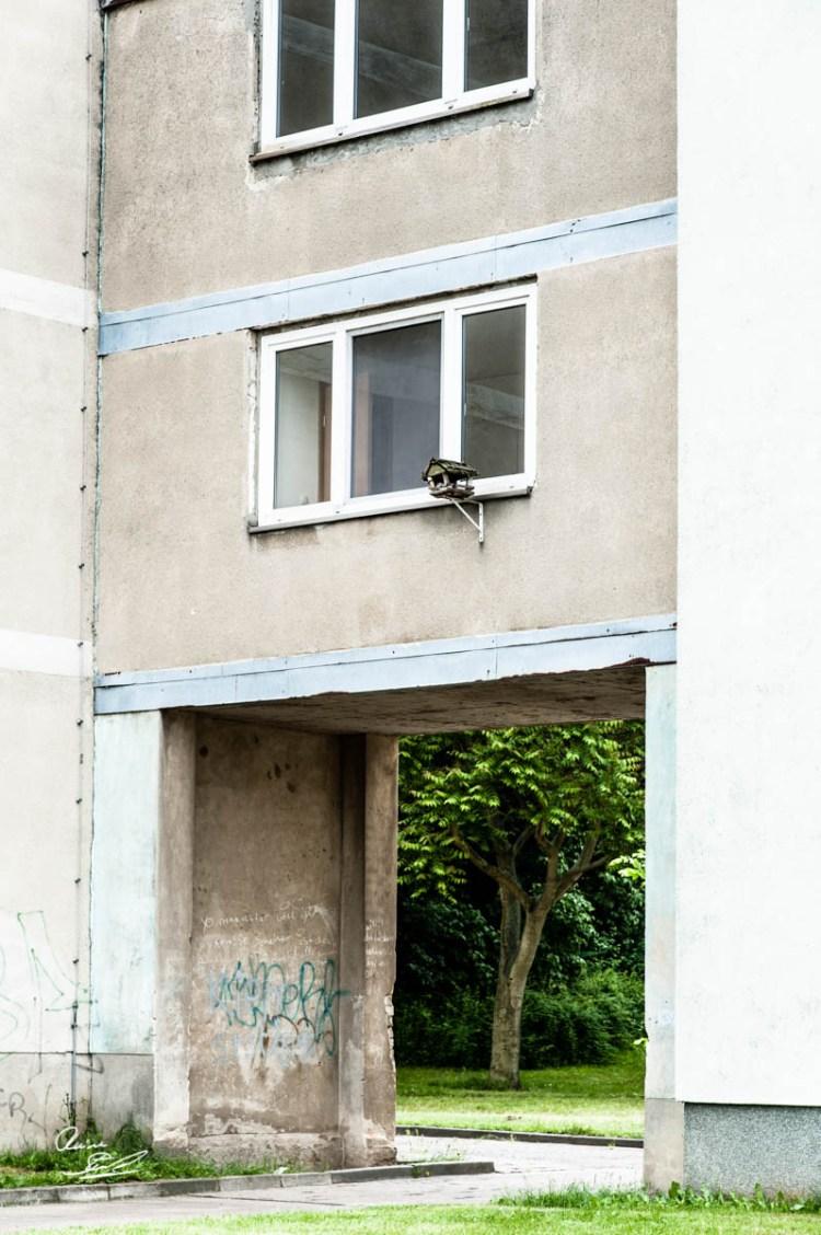 Rainer_Steussloff_140603050686