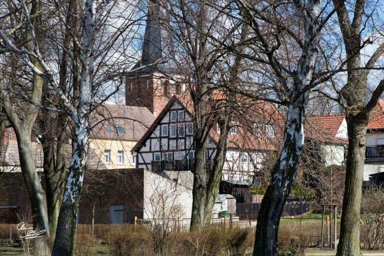 Rainer_Steussloff_150405058107